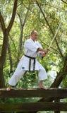 Volwassen mensen die Karate uitoefenen openlucht stock foto's