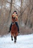 Volwassen vrouwen galopperende horseback op de winterweg Stock Afbeelding