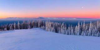 Vom Rasen bedeckt mit Schnee, ein Panoramablick von bedeckt mit Frostbäumen, Nebel, hohe, steile Berge Lizenzfreie Stockfotografie