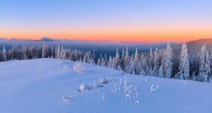 Vom Rasen bedeckt mit Schnee, ein Panoramablick von bedeckt mit Frostbäumen, Nebel, hohe, steile Berge Lizenzfreies Stockbild