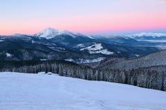 Vom Rasen bedeckt mit Schnee, ein Panoramablick von bedeckt mit Frostbäumen, Nebel, hohe, steile Berge Stockfotografie