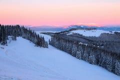 Vom Rasen bedeckt mit Schnee, ein Panoramablick von bedeckt mit Frostbäumen, Nebel, hohe, steile Berge Stockfoto