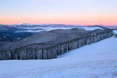 Vom Rasen bedeckt mit Schnee, ein Panoramablick von bedeckt mit Frostbäumen, Nebel, hohe, steile Berge Stockbild