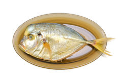 Vomer fish smoked on a plate on a white background. Stock Images