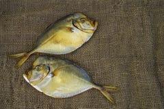 Vomer fumé de deux poissons sur la toile de jute Photographie stock libre de droits