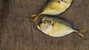 Vomer fumé de deux poissons sur la toile de jute Image libre de droits