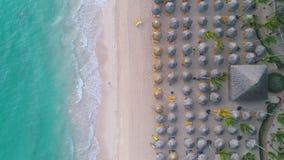 Von der Luftdraufsicht des tropischen Strandes Leute, Regenschirme, Stühle Tropischer Strand mit Palme stock footage