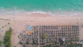 Von der Luftdraufsicht des tropischen Strandes Leute, Regenschirme, Stühle Tropischer Strand mit Palme stock video