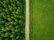 Von der Luftdraufsicht einer Landstraße durch einen Tannenwald und ein grünes Feld im Sommer Stockbilder