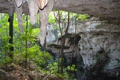 Von der Untertagehöhle mit einer Oase Stockbild