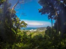 Von Forest Clearing zur Küstenlinien-Stadt stockfotos