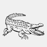 Von Hand gezeichnete Bleistiftgraphiken, Krokodil, Alligator, croc Gravieren, Schablonenart Schwarzweiss-Logo, Zeichen, Emblem stockfotos