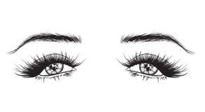 Von Hand gezeichnete Frau ` s luxuriöse Augen stockfoto