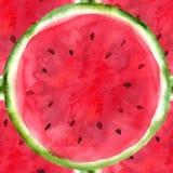 Von Hand gezeichnete geschnittene Wassermelone Stockbilder
