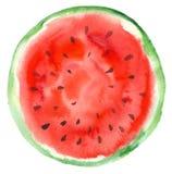 Von Hand gezeichnete geschnittene Wassermelone Lizenzfreie Stockfotos