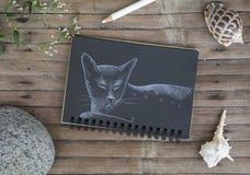 Von Hand gezeichnete Illustration der schläfrigen Katze Katze durch weiße Kreide auf schwarzem Papier Stockfoto
