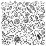 Von Hand gezeichnete Obst und Gemüse in der Gekritzelart lokalisiert auf weißem Hintergrund stock abbildung