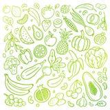 Von Hand gezeichnete Vektorillustration mit einem gesunden Nahrungsmittelthema Obst und Gemüse in einer organischen Art des urspr stock abbildung
