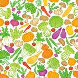 Von Hand gezeichneter Gemüsehintergrund Stockbilder