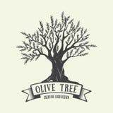 Von Hand gezeichnetes grafisches Logo mit Olivenbaum Auch im corel abgehobenen Betrag vektor abbildung