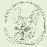 Von Hand gezeichnetes Logo der französischen Bulldogge des Vektors Lizenzfreies Stockbild