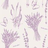 Von Hand gezeichnetes nahtloses Muster des Lavendels lizenzfreie stockfotos