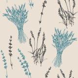 Von Hand gezeichnetes nahtloses Muster des Lavendels lizenzfreies stockbild