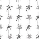 Von Hand gezeichnetes nahtloses Muster mit den Palmen, lokalisiert auf weißem Hintergrund Stockfotografie