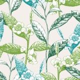 Von Hand gezeichnetes nahtloses Muster mit Teeblättern und Blumen stockfoto