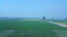 Von meinem Dorf Lizenzfreies Stockbild