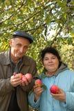 Von mittlerem Alter Paare stehen unter Baum, anhalten Äpfel Lizenzfreies Stockfoto