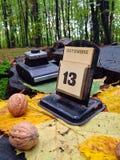 13 von Oktober im Wald Lizenzfreies Stockfoto