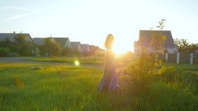 von riechenden Blumen der jungen Frau auf dem Gebiet während des Sonnenaufgangs in der Landschaft stock video