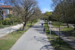 Vondelpark阿姆斯特丹荷兰在春天 免版税库存图片