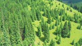 Voo aéreo nas montanhas video estoque