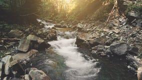 Voo aéreo: rio da montanha na floresta do outono vídeos de arquivo