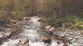 Voo aéreo: rio da montanha na floresta do outono filme