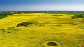 Voo acima dos campos da violação e da turbina eólica verdes, Polônia video estoque
