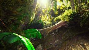 Voo através da selva verde Árvores e palmeiras verdes da selva com céu azul e o sol brilhante O conceito do curso
