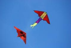 Voo colorido dos papagaios Fotografia de Stock Royalty Free