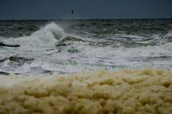 Voo da gaivota sobre ondas tormentosos do mar imagem de stock