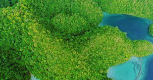 Voo da vista aérea sobre a lagoa verde bonita e tropical de Sugba das montanhas em Siargao, Filipinas video estoque