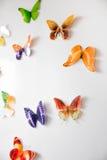 Voo de borboletas bonitas e delicadas Fotos de Stock Royalty Free