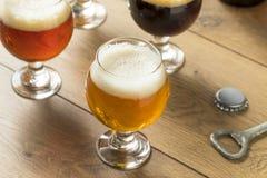 Voo de refrescamento da cerveja fria Fotos de Stock