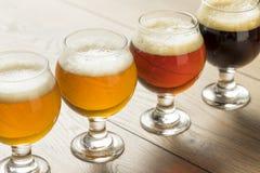 Voo de refrescamento da cerveja fria Imagens de Stock