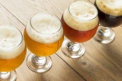 Voo de refrescamento da cerveja fria Fotos de Stock Royalty Free
