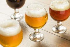 Voo de refrescamento da cerveja fria Foto de Stock