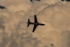 Voo do falcão nas nuvens Fotos de Stock Royalty Free