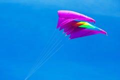 Voo do papagaio no céu azul Foto de Stock Royalty Free