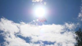 Voo do papagaio no céu azul contra o sol Voo do papagaio em um céu bonito com sol e nuvens video estoque